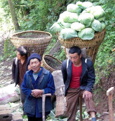 A man carrying home cabbages after harvest in Wanjia Village